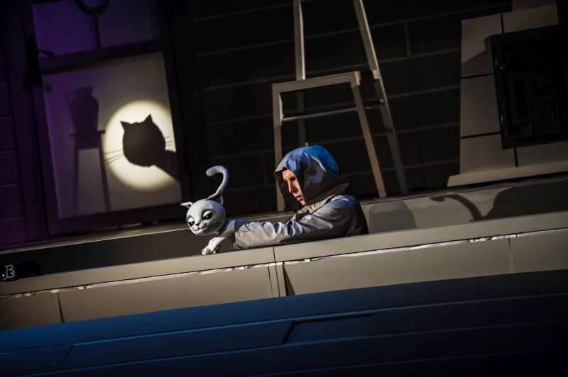 Przygody Kota Filemona W Teatrze Baj Spektakl Dla Małych I Dużych