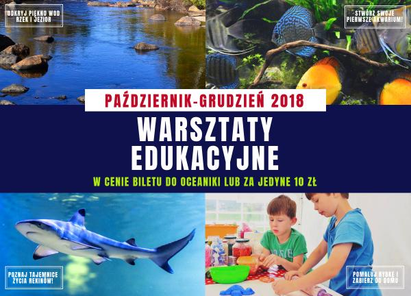 Warsztaty Edukacyjne Na świętokrzyskiej Polanie Lublin Czas Dzieci