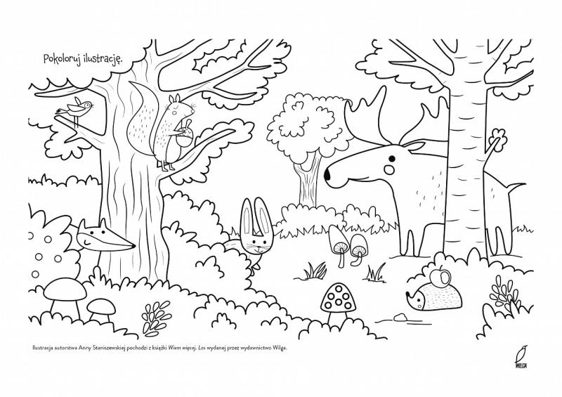 Kolorowanki Edukacyjne Od Wydawnictwa Wilga Kolorowanki Czas Dzieci